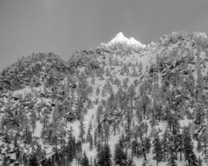 Sierra Winter Scene